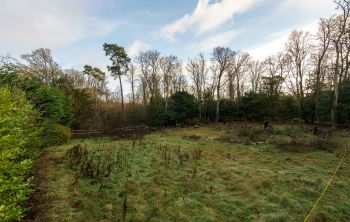 Plot of Land, Old Dairy House Dundas Home Farm, South Queensferry